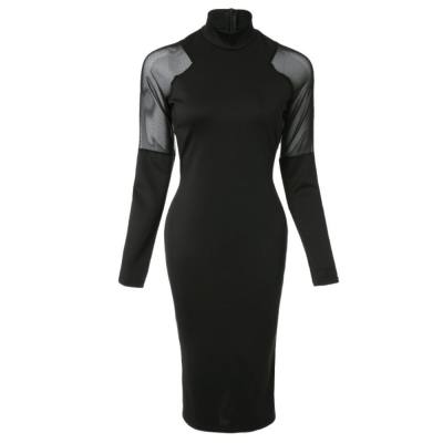Sexy Turtle Neck Long Sleeve See-Through Solid Color Women's Dress