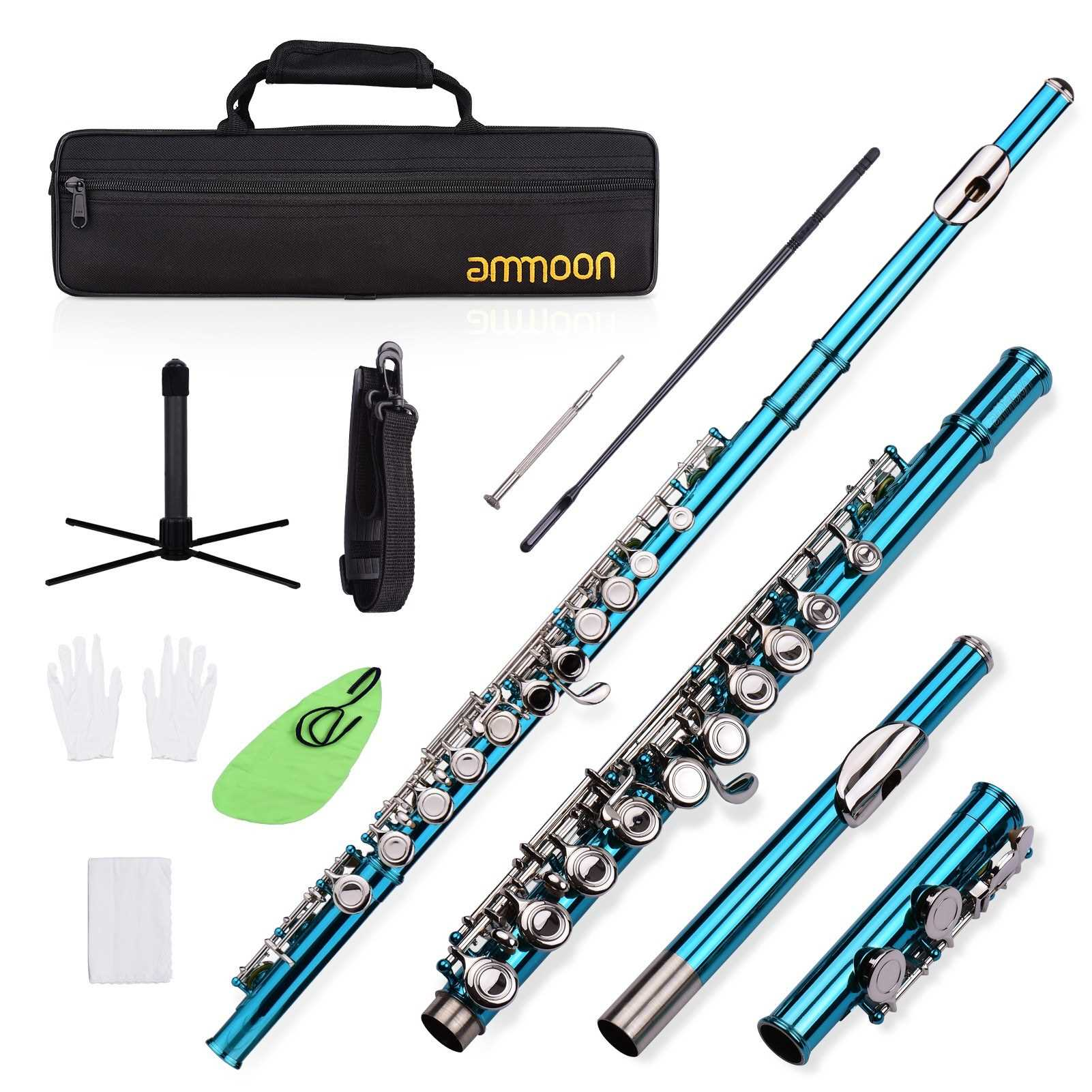 ammoon Closed Hole C Flute 16 Keys Cupronickel Nickel-plated Wind Instrument with Carry Case Flute Stand Gloves Cleaning Cloth Mini Screwdriver Cleaning Rod (Blue Green) Malaysia